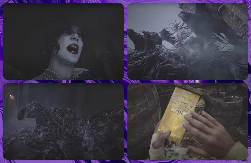 Resident Evil 8 Village - Cốt truyện game Ethan tìm thấy hộp chứa Rosemary đầu tiên